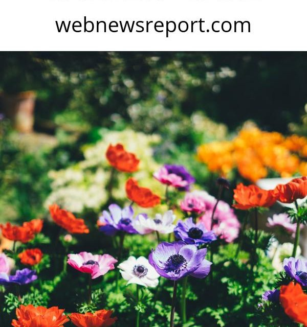 Here's a Quick Way to Know Some Tips About Garden Care