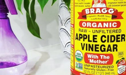 Effective Remedies You Can Do With Apple Cider Vinegar