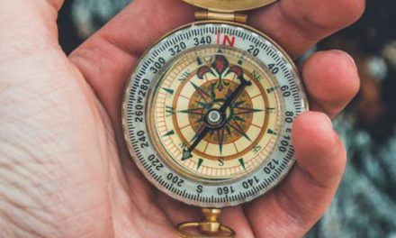 You Have Enough Time, Science Says