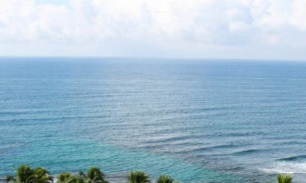 The Ultimate to Caribbean Cruise Tours